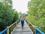salah-satu-kegiatan-yang-bisa-dilakukan-di-taman-wisata-mangrove-klawalu-sorong-papua-barat.jpg