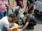 seorang-sopir-diringkus-tim-dit-res-narkoba-polda-sumut-karena-mengedarkan-30-kg-ganja.jpg