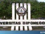 universitas-diponegoro-undip.jpg