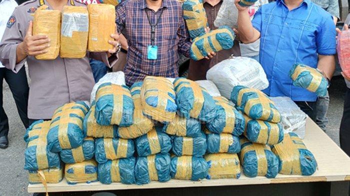 100 Kilogram Ganja Asal Aceh Bakal Dibarter 25 Kg Sabu-sabu di Malaysia, Mobil Pengangkut Disewa