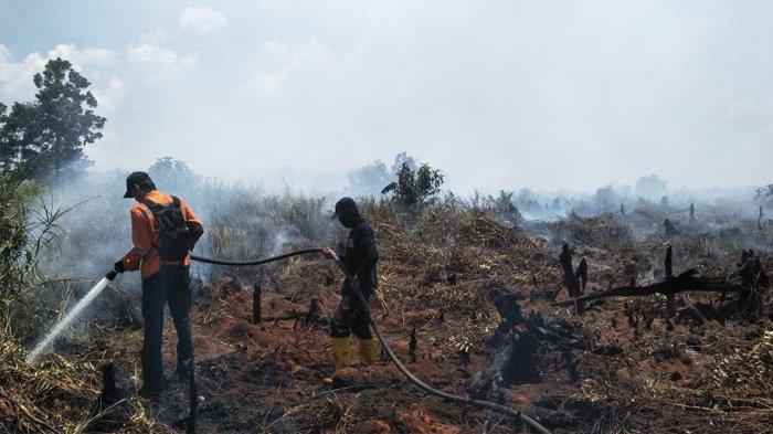 4 Hari Terbakar, Dua Helikopter Diturunkan untuk Water Bombing Karhutla di Pangkalan Terap Pelalawan