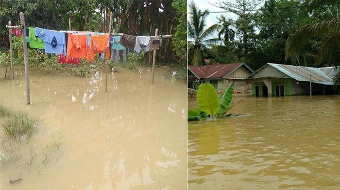 Kondisi banjir di Desa Lubuk Kembang Bunga dan Desa Air Hitam Kecamatan Ukui Kabupaten Pelalawan pada Rabu (11/11/2020) lalu.