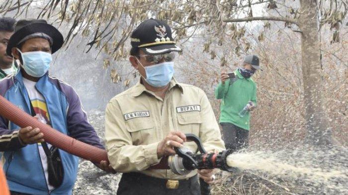 60 Hektar Lahan di Kempas Inhil Riau Jadi Korban Kebakaran, Mayoritas Perkebunan Tak Terawat