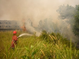Meneg LH Dialog dengan Tokoh Riau