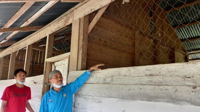 Ada Sekolah di Kuansing Mirip Bangunan Sekolah Laskar Pelangi, Mardianto Manan Kaget: Prihatin