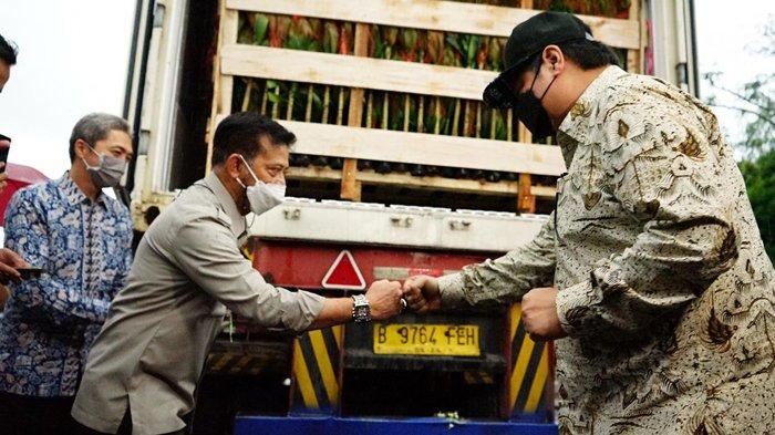 Airlangga Hartarto: Tingkatkan Ekspor Florikultura, Penuhi Ceruk Pasar Dunia