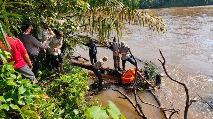 Anak Tenggelam di Sungai Batang Lubuh Rohul Ditemukan, Jasad Tersangkut di Batang Sawit Tumbang