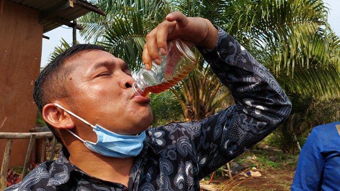 Apa Itu Madu Lebah Melifera? Budidaya Lebah Melifera di Riau Hasilkan Rp 160 Juta Sepekan