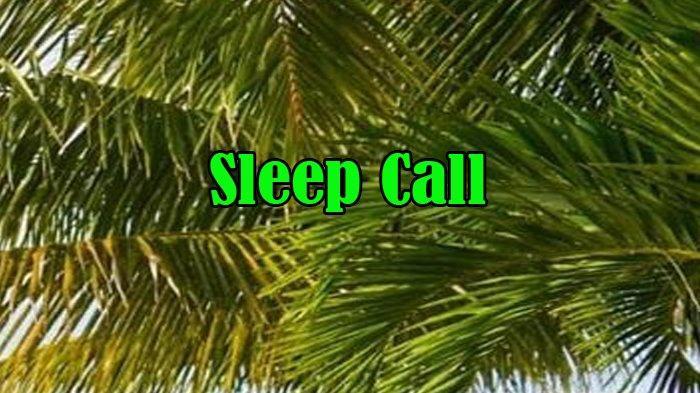 Apa Itu Sleep Call dalam Bahasa Gaul dan Apa Arti Sleep Call dalam Bahasa Gaul serta Arti Sad Boy