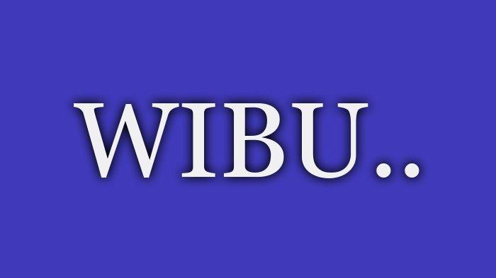Apa Itu Wibu Dalam Bahasa Gaul? Jawaban Arti Wibu Ada Disini