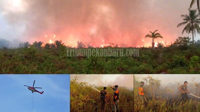 Perkara Karhutla yang Ditangani Polres Pelalawan Riau Masih Nihil, Kapolres : Jangan Bakar Lahan