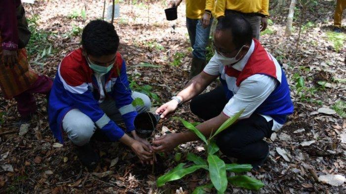 Arboretum Gambut Marsawa, Eduwisata Berbasis Lingkungan Pusat Konservasi di Sungai Pakning