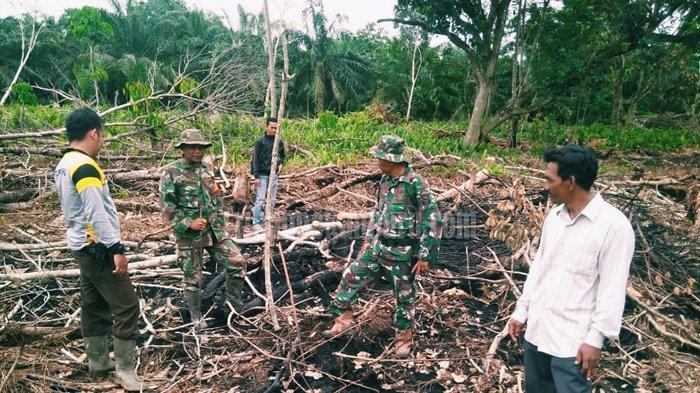 ASAP Akibat Karhutla di Riau Nyaris Menyelimuti, Untung Hujan, Karhutla di Sejumlah Daerah pun Padam