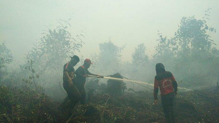 Asap Mengepul Pekat di Lokasi, Karhutla di Lahan Konsesi Perusahaan di Siberuk Siak Riau