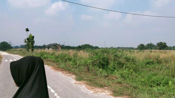 BREAKING NEWS - Bau Asap Menyengat Tercium di Pekanbaru, Ini Penjelasan BMKG