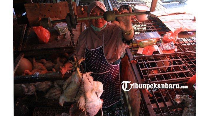 Harga Daging Ayam Ras dan Cabe Merah Masih Tinggi di Pekanbaru