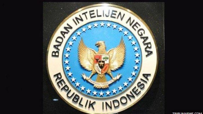 Kesempatan Mengabdi di BIN, Info CASN dan CPNS BIN 2021, Lengkapi Persyaratannya