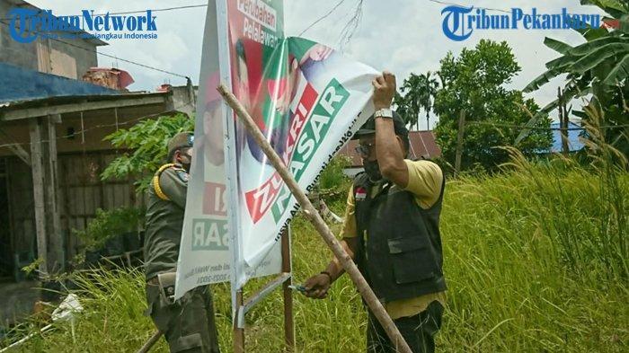 Baliho Manjat Pohon, Bawaslu Pelalawan Tertibkan 2000 Alat Peraga Sosialisasi Bapaslon Kepala Daerah