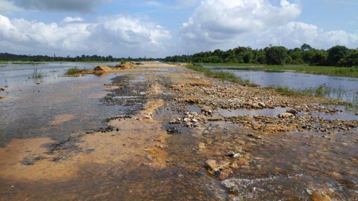BREAKING NEWS - Banjir Surut, Pagi Ini Jalan Koridor Langgam Riau Kembali Dibuka,Ponton Beroperasi