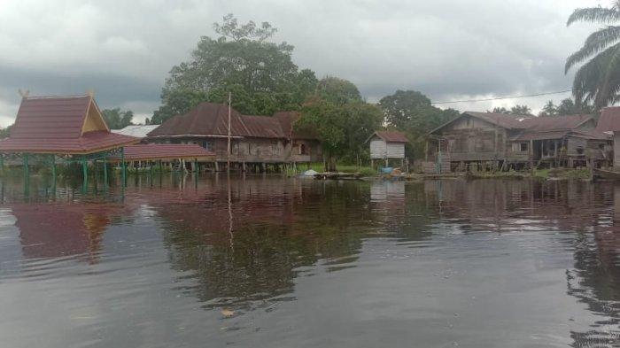 Update Banjir di Pelalawan, Langgam Telah Surut Sedangkan 2 Desa di Pangkalan Kerinci masih Terendam