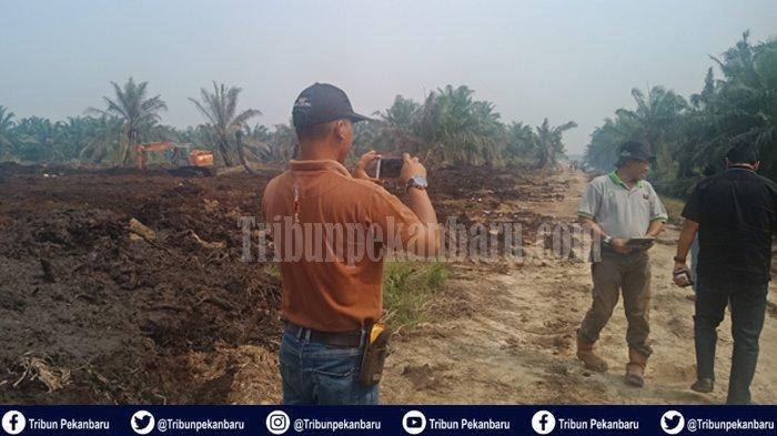 BREAKING NEWS: Kebun Kelapa Sawit Milik PT Adei Plantation and Industry di Riau Terbakar Seluas 4 Ha