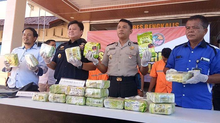 KronologiPenangkapanNarkoba 19 Kgoleh Polres Bengkalis, Polisi Buntuti Kendaraan yang Dicurigai