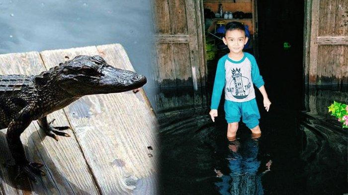 Buaya Mengintai Saat Banjir di Riau, Warga Harap Awasi Anak-anak, 29 Rumah Terendam Banjir di Inhil