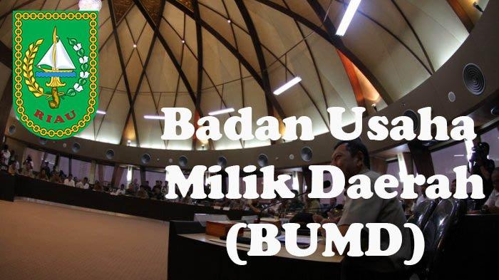 BUMD Pemkab Pelalawan PD Tuah Sekata Bantah Tidak Setor Biaya Listrik ke PT RAPP
