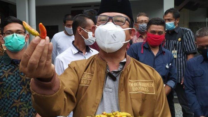 Cabai Rawit Dicat Merah Ditemukan di Pasar, Warnanya Tidak Bisa Larut, Diduga Bukan Pewarna Makanan