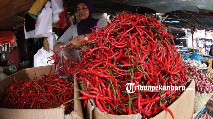FOTO: Jelang Lebaran, Harga Cabai Merah di Pekanbaru Naik 100 Persen - cabe-cabai-sembako-pasar-agus-salim-pasar-suka-ramai_20180612_141844.jpg