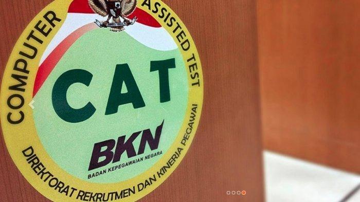 INFO CPNS 2019, Update Jumlah Pelamar Serta Cara Ikut Simulasi CAT BKN Online, Akses cat.bkn.go.id