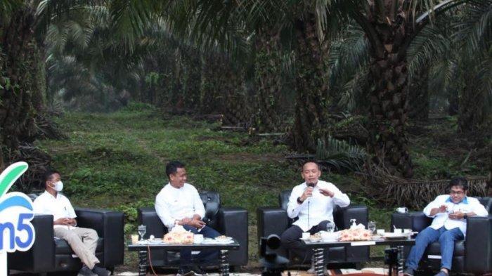 Ini Kiat PTPN V Membangun Kebun dengan Produktivitas Sawit Muda Tertinggi di Indonesia
