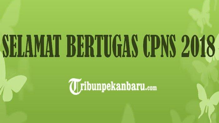 CPNS 2018 Pekanbaru Segera Bertugas, CPNS 2018 Kepulauan Meranti Terima SK dan Gaji, Ini Jadwalnya