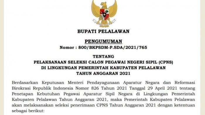 CPNS Pelalawan, Seleksi Penerimaan CPNS dan PPPK Resmi Diumumkan, Cek di Website