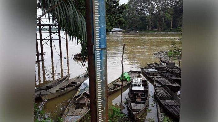 Diguyur Hujan Deras Sepekan, Permukaan Sungai di Pelalawan Mulai Naik, BPBD Minta Warga Waspada