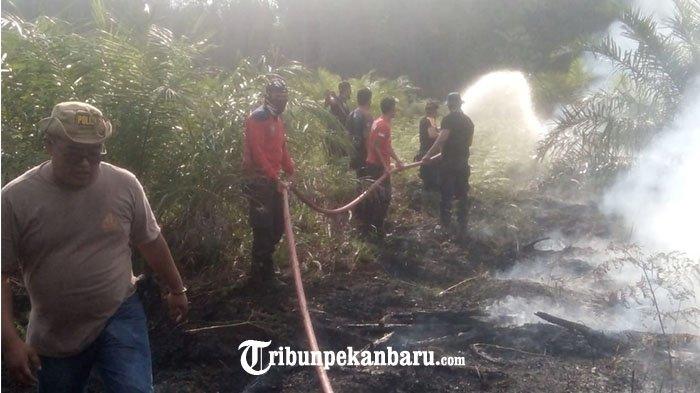Api Tak Kunjung Padam, Tim Damkar Siak Rayakan Idul Adha di Lokasi Karhutla