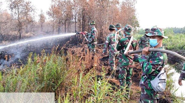 AKIBAT Karhutla di Riau 2020, Lahan Terbakar di Dumai Mencapai 68,3 Hektar
