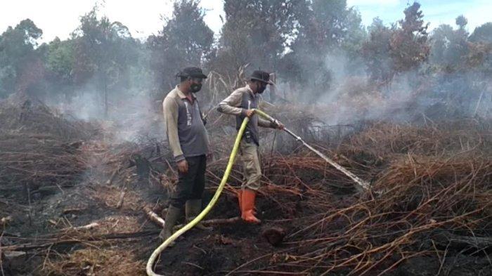 Kebakaran Hutan dan Lahan (Karhutla) di Kelurahan Teluk Meranti, Kecamatan Teluk Meranti, Kabupaten Pelalawan, Riau akhirnya berhasil dipadamkan pada Selasa (12/10/2021) sore lalu. Setelah lima hari proses pemadaman dilakukan oleh tim gabungan.