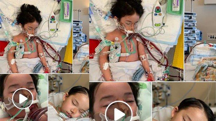 Awalnya Luka di Kaki, Penyebab Bocah 4 Tahun Derita Penyakit Langka Sampai Koma dan Tak Bisa Jalan