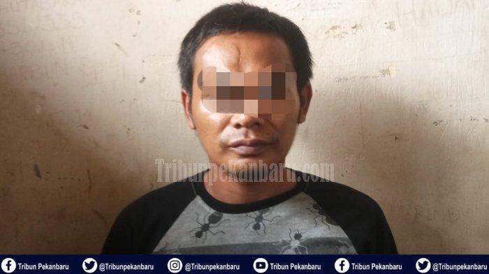 DPO Pelaku Pencurian Kendaraan Bermotor atau Curanmor di Riau Ditangkap, Berawal dari Patroli Polisi