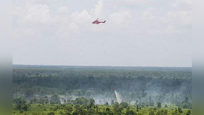 Kebakaran Lahan Melanda Sejumlah Desa di Kubu Rohil, Petugas Darat dan Udara Berjibaku Padamkan Api