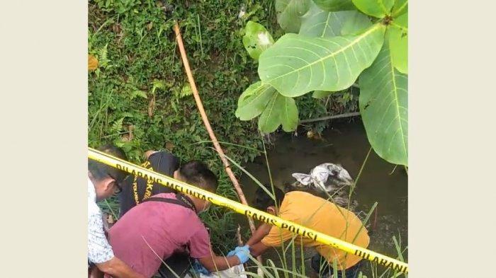 Karung Diduga Berisi Mayat Manusia Dievakuasi Ke RS Bhayangkara Polda Riau