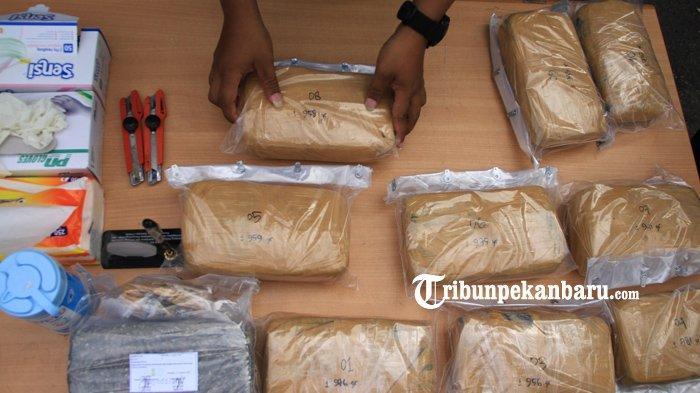 Paket Dikemas Cantik, Mahasiswa Tertangkap Tangan Order Ganja Sampai 1,3 Kilogram