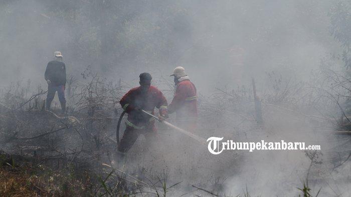 Daftar Karhutla Tiap Kabupaten, Sudah 4,5 Ribu Hektare Lahan Terbakar di Riau dan Asap Makin Pekat