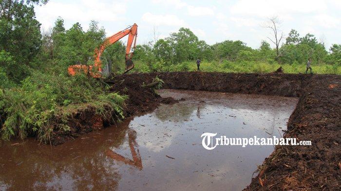 BREAKING NEWS: Pemprov Riau Siapkan 13 Jurus Cegah Karhutla di Musim Kemarau, 2020 Riau Bebas Asap