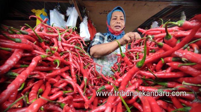 Seorang pedagang sedang menata cabe merah di Pasar Agus Salim, Pekanbaru, Rabu (23/12/2020). (www.tribunpekanbaru.com/Doddy Vladimir)