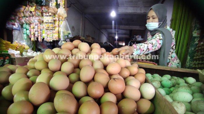 FOTO: Harga Telur Ayam di Pekanbaru Turun - foto_harga_telur_ayam_di_pekanbaru_turun_1.jpg