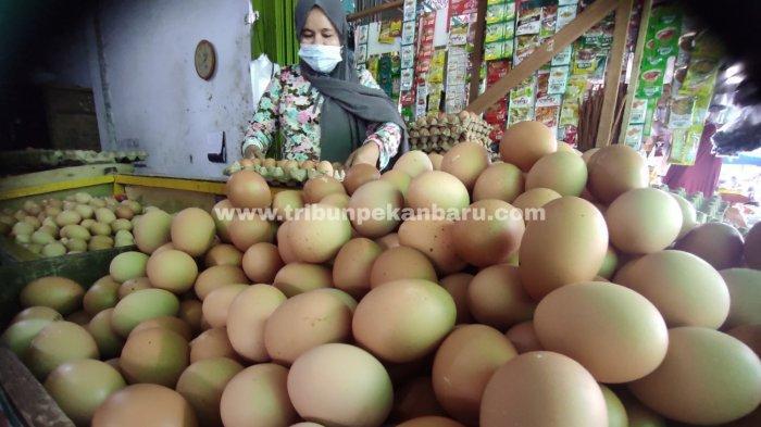 FOTO: Harga Telur Ayam di Pekanbaru Turun - foto_harga_telur_ayam_di_pekanbaru_turun_2.jpg
