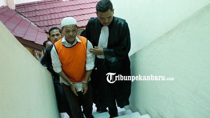 Kakek Syafrudin Divonis Bebas, Pengunjung Teriak: Hidup Petani, Kasus Pembakaran Lahan di Pekanbaru