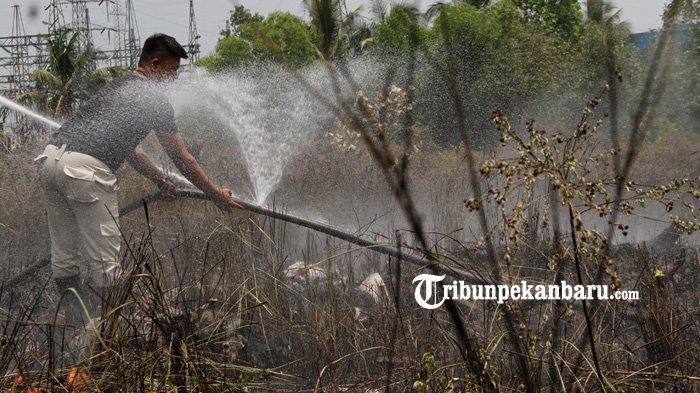 FOTO: Kebakaran Lahan di Jalan Bundo Kandung Pekanbaru - foto_kebakaran_lahan_di_jalan_bundo_kandung_pekanbaru_2.jpg